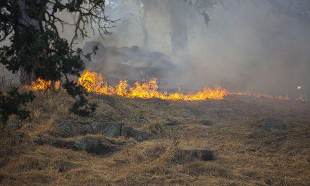 10 Acres Burn in Brush Fire